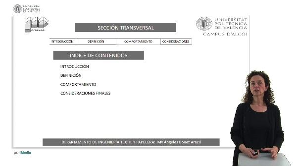 Propiedades geométricas de las fibras.Sección Transversal
