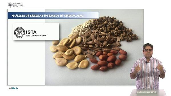 Análisis de semillas en bancos de germoplasma