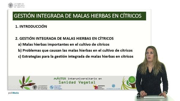 Gestión integrada de malas hierbas en cítricos