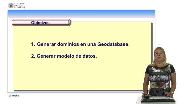 Dominio y modelo de datos en ArcGIS