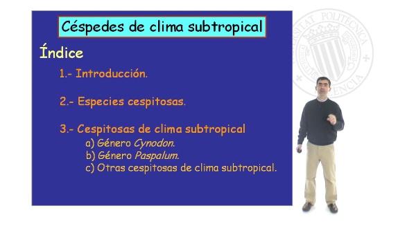 Céspedes de clima subtropical