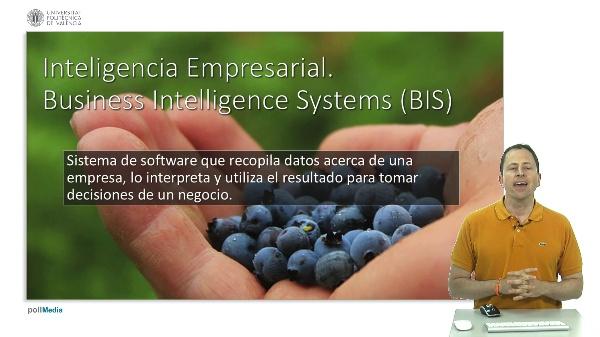 Sistemas de inteligencia empresarial