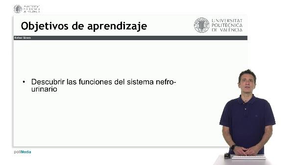 Funciones Fisiológicas del Sistema Urinario