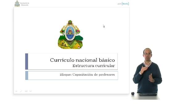Currículo nacional básico. Estructura curricular