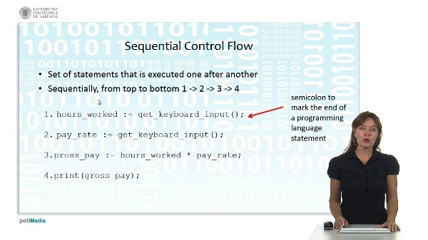 Programming Logic and Languages: program control structures
