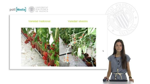 Herramientas genéticas para la mejora de plantas hortícolas