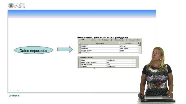 Depuración de datos en ArcGIS