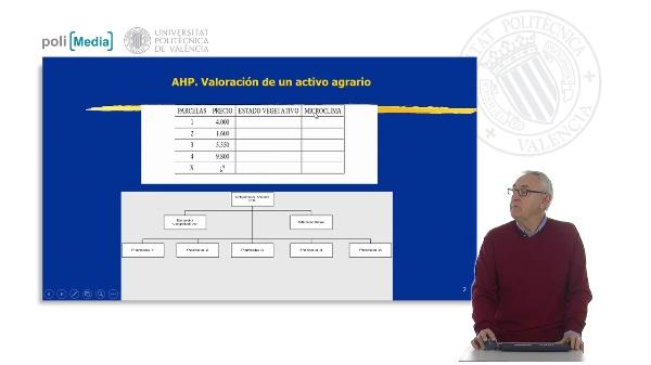 Caso 1. AHP. Valoración de un activo agrario