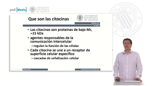 Citocinas. Clasificación