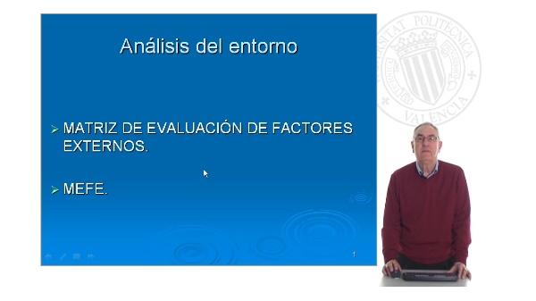 Matriz de Evaluación de Factores Externos (MEFE)