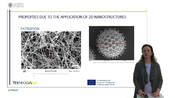 PROPERTIES DUE TO THE APPLICATION OF 2D NANOSTRUCTURES