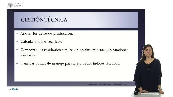 Bases de la gestión técnico-económica en cunicultura