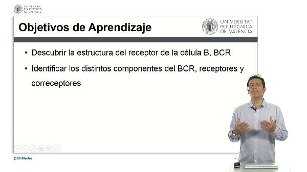 El Receptor de la Célula B, BCR