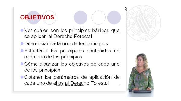 Principios básicos del Derecho Forestal