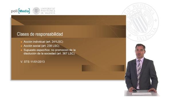 Responsabilidad administradores. Sociedades de capital