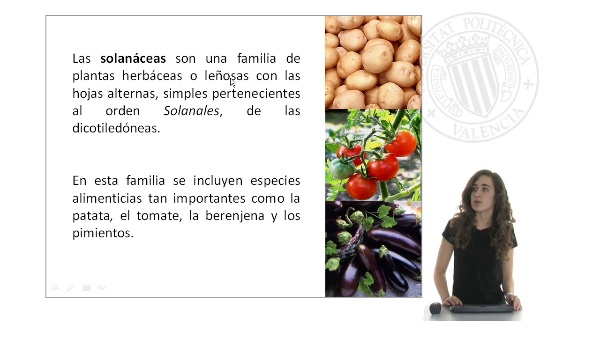 Mejora de la calidad nutricional y resistencia a enfermedades en solanáceas