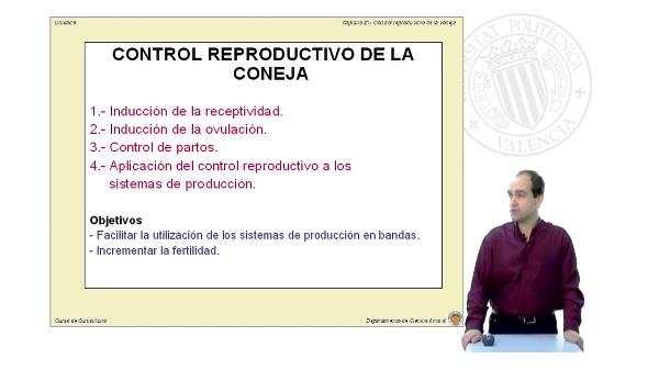 Control reproductivo de la coneja (Parte 2)
