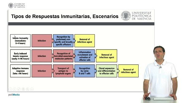 Tipos de Respuesta Inmunitaria