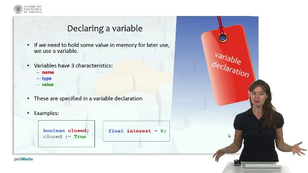 Programming Logic and Languages: Variable Declaration and programming style