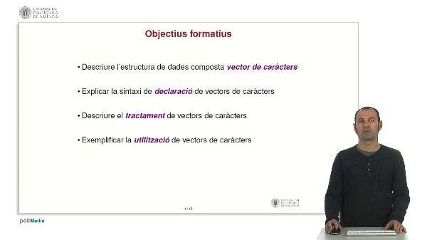 Llenguatge C: Vectors de caràcters