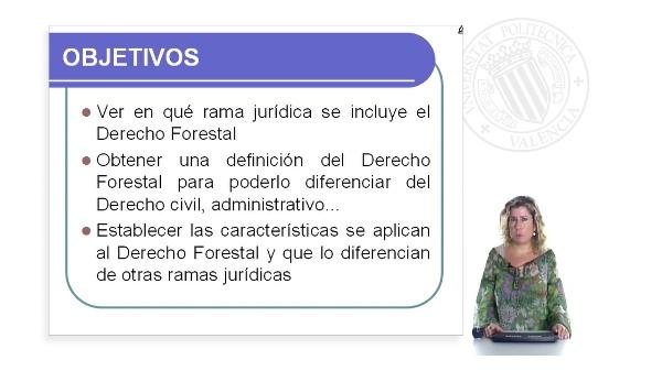 Definición y Características del Derecho Forestal