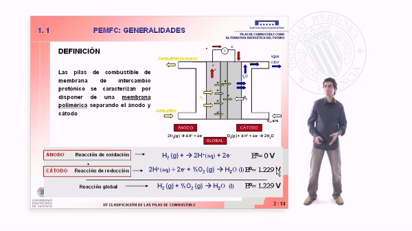 Pilas de combustible de intercambio protónico: Generalidades
