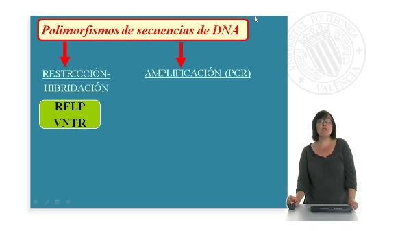 Marcadores moleculares basados en PCR: Marcadores SSR. Microsatelites