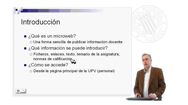 MicroWebs -III