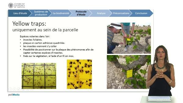 La biodiversite sur la commune de benitatxell (projet biomoscatell) 3