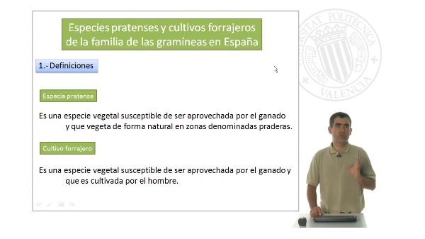 Especies pratenses y cultivos forrajeros de la familia de las Gramineas en España