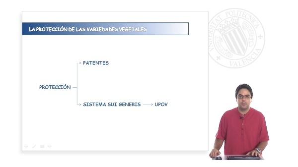 La protección de las variedades vegetales en España
