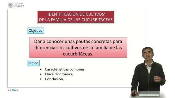Identificación de cultivos hortícolas de la familia de las cucurbitáceas