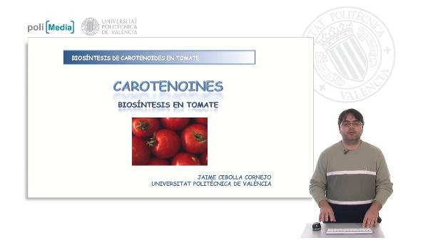 Biosíntesis de carotenoides en tomate
