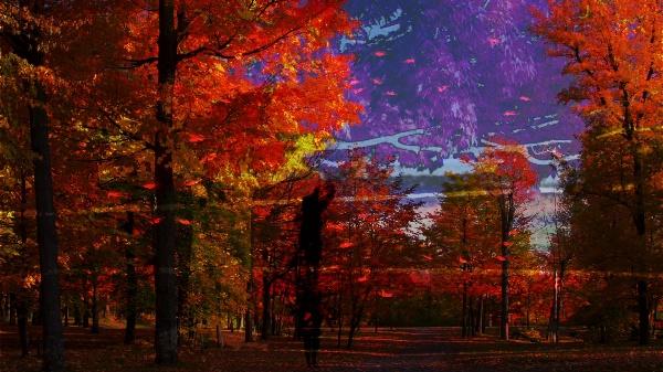 Esquisse d'automne et d'hiver