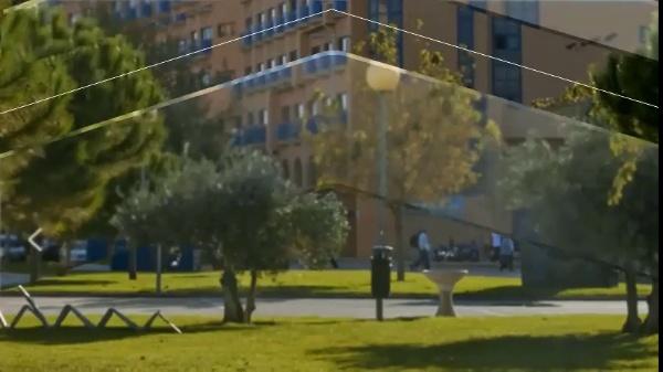 PCPO 2020 - Funcionamiento, Normativa y Contenidos