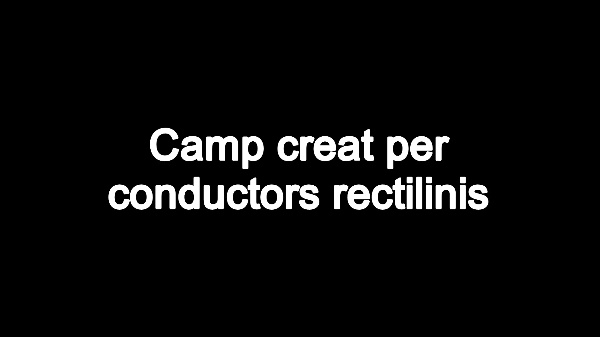 T4E: Camp de conductors rectilinis V