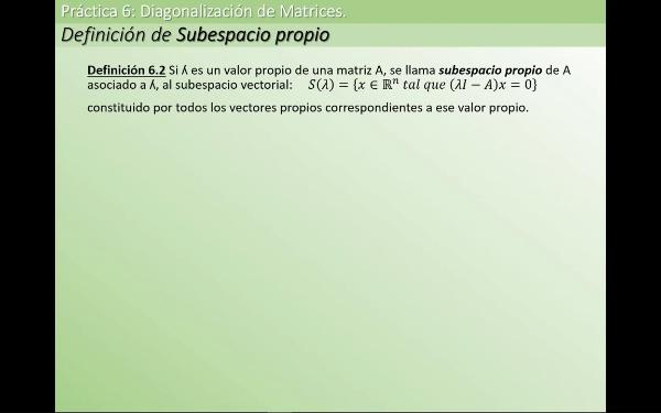MATE1-6-01e sub esp vect propio