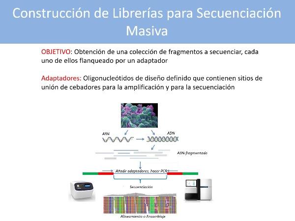 Pasos Básicos en la Construcción de Librerías para Secuenciación Masiva