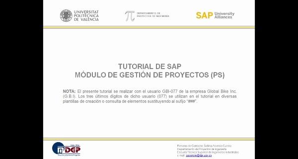 Tutorial de SAP (G.B.I. 2.20): Gestión de Proyectos (PS). Seguimiento.