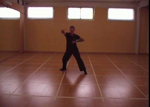 montaje experimental danza con musica de Pep Llopis, vuela conmigo