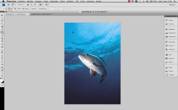 Adobe Photoshop Herramienta Parche