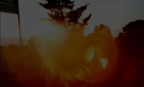 video_carta_respuesta_09