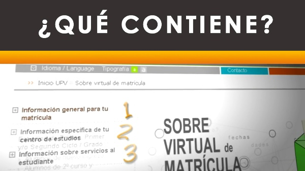 Sobre virtual de matrícula - 2010
