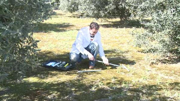 Como tomar muestras de suelo