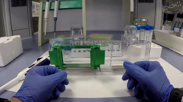 Preparation of a polyacrylamide gel