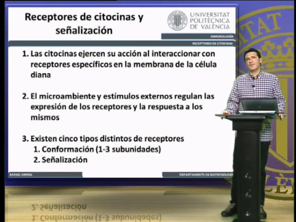 Receptores de Citocinas, clasificación (II)