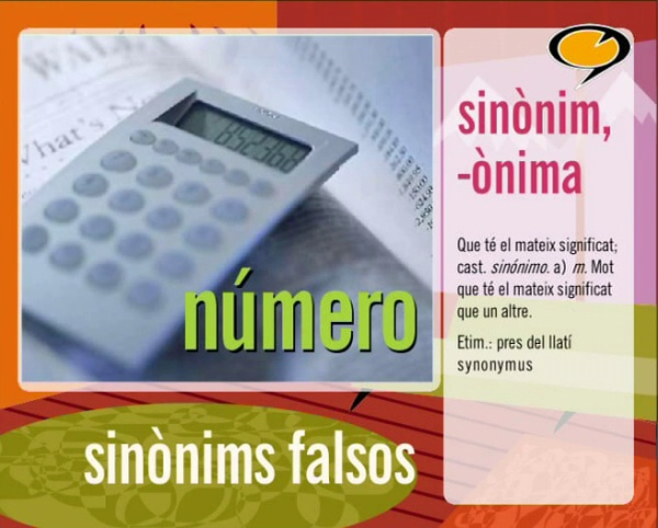 Sinònims falsos (3)
