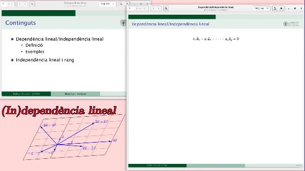 Dependència lineal i independència lineal