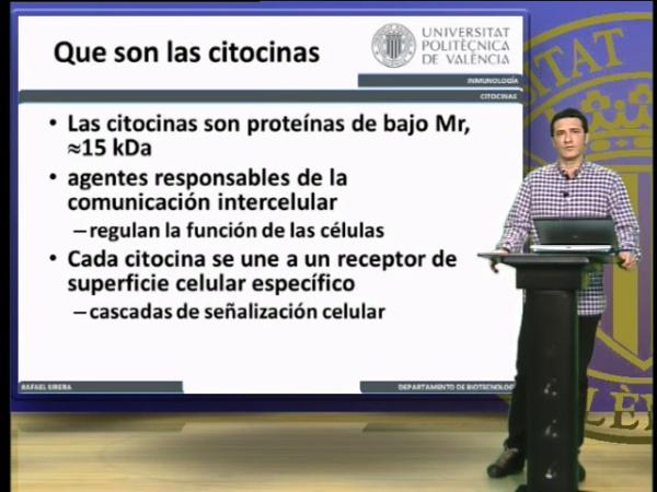 Citocinas, caracterásticas (II)
