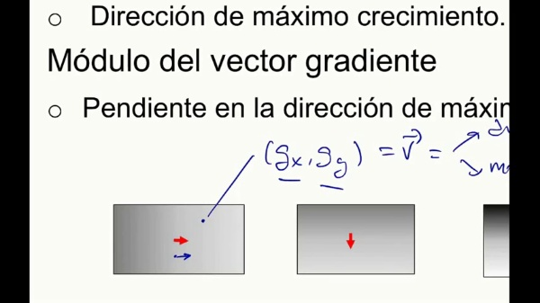 Interpretación Gradientes